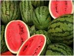 البطيخ يخفف من السمنة