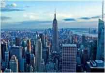 ظهور فيروس زيكا في نيويورك