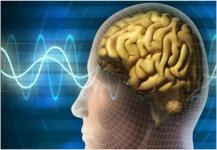 الرياضة في الأربعين تمنع تقلص الدماغ