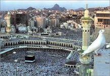 إمام المسجد الحرام: «التحالف الإسلامي».. رداء يحوط العدل وقوة تذود عن الأمن والسلم
