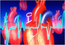 تجميد القلب وتسخينه يعطي أملا في زراعة الأعضاء