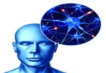 إصابات الدماغ تزيد فرص التعرض للخرف