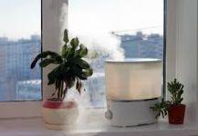 كيف تكافح السموم داخل منزلك؟