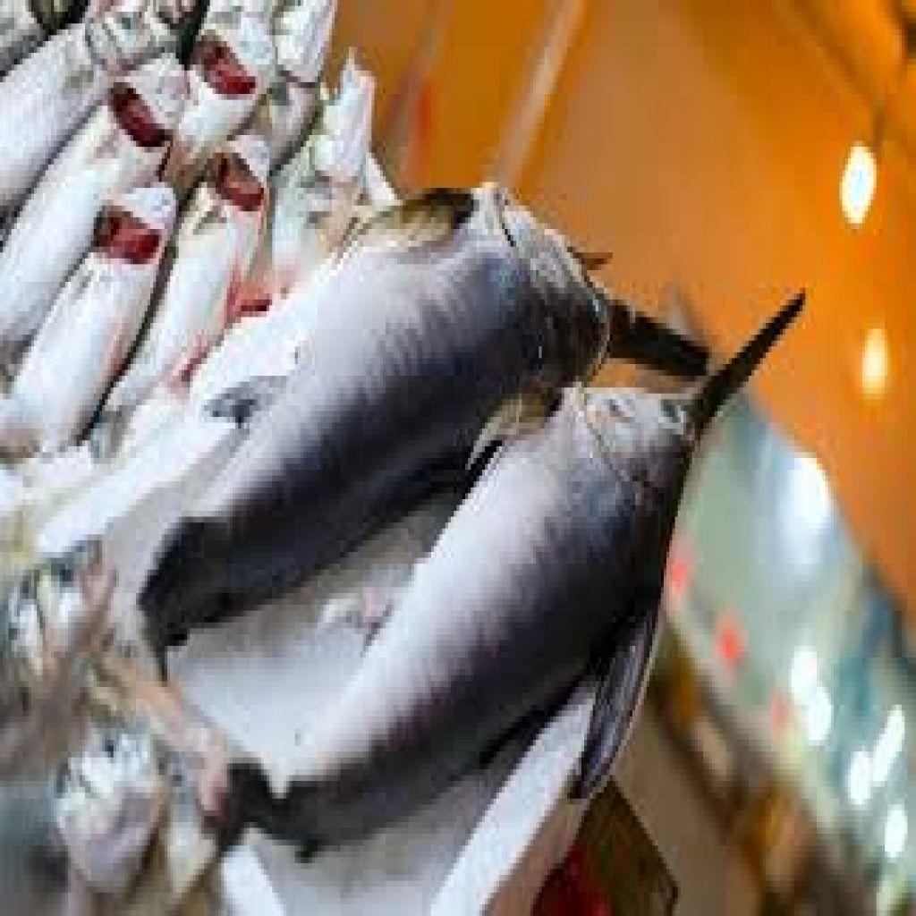 """من أفضل الأسماك للحصول على فيتامين """"د"""""""